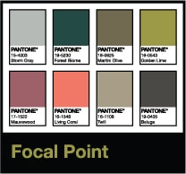 living coral color board focal point